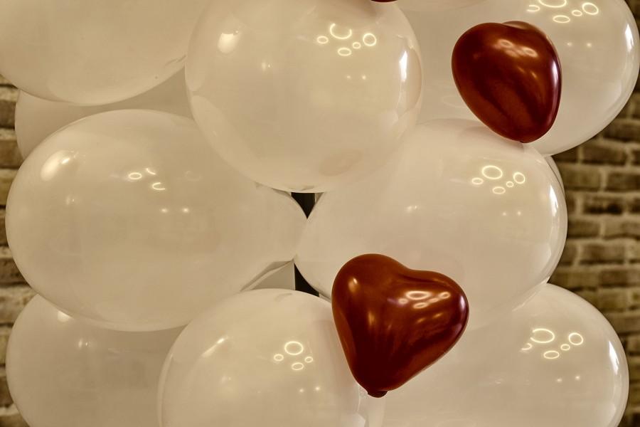 San valentín - Celebración día de los enamorados - Acutaciones en directo