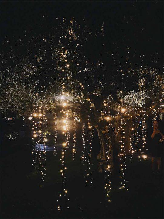 bodas magicas en el porton de la condesa murcia fincas