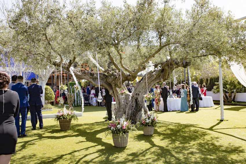 Jardines boda Murcia Porton Condesa Fredy Mazza